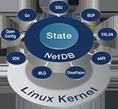 NetDB_linux_160